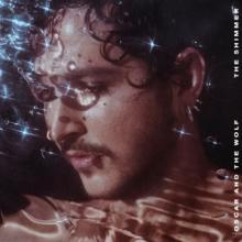 OSCAR AND THE WOLF  - CD SHIMMER