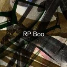 RP BOO  - 2xVINYL ESTABLISHED! [VINYL]