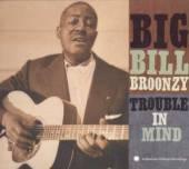 BROONZY BIG BILL  - CD TROUBLE IN MIND