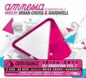 AMNESIA IBIZA-DJ SESSION 7  - CD AMNESIA IBIZA-DJ SESSION 7 (GER)