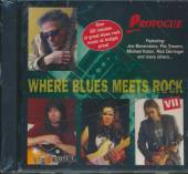 VARIOUS  - CD WHERE BLUES MEETS..