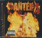 PANTERA  - CD REINVENTING THE STEEL