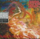 MORBID ANGEL  - CD BLESSED ARE THE SICK