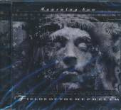 FIELDS OF THE NEPHILIM  - CD MORUNING SUN