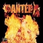 PANTERA  - VINYL REINVENTING THE STEEL [VINYL]