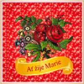 ZMOZEK JIRI  - CD AT ZIJE MARIE