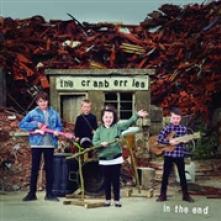 CRANBERRIES  - VINYL IN THE END [VINYL]