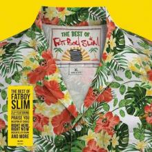 FATBOY SLIM  - 2xVINYL BEST OF [VINYL]