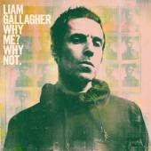 GALLAGHER LIAM  - CD WHY ME? WHY NOT.