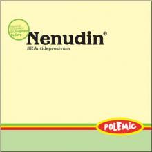 POLEMIC  - CD NENUDIN (REEDICIA)