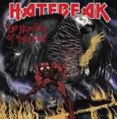 VINYL Hatebeak Number of the beak [vinyl]