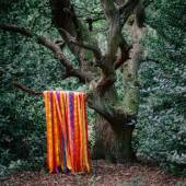 CD James Holden & The Animal Spirit The a