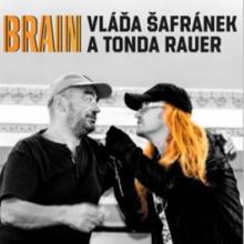 CD Safranek Vlada A Rauer Tonda Brain